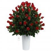 Lata con 75 Rosas Rojas