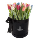 Sombrerera Negra 25 Tulipanes Rosatel