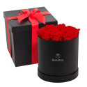 Sombrerera Grande con 14 Rosas Preservadas Rosatel