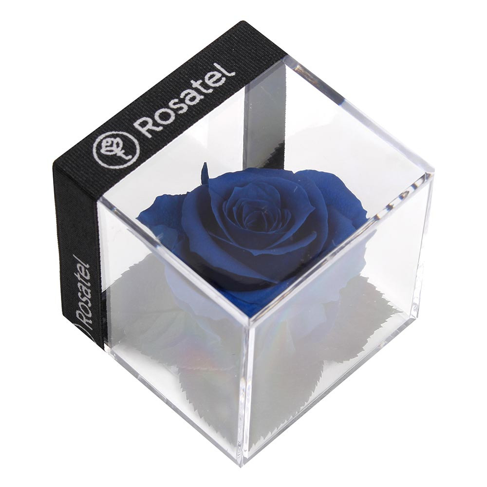 Rosa Preservada en Cubo Rosatel