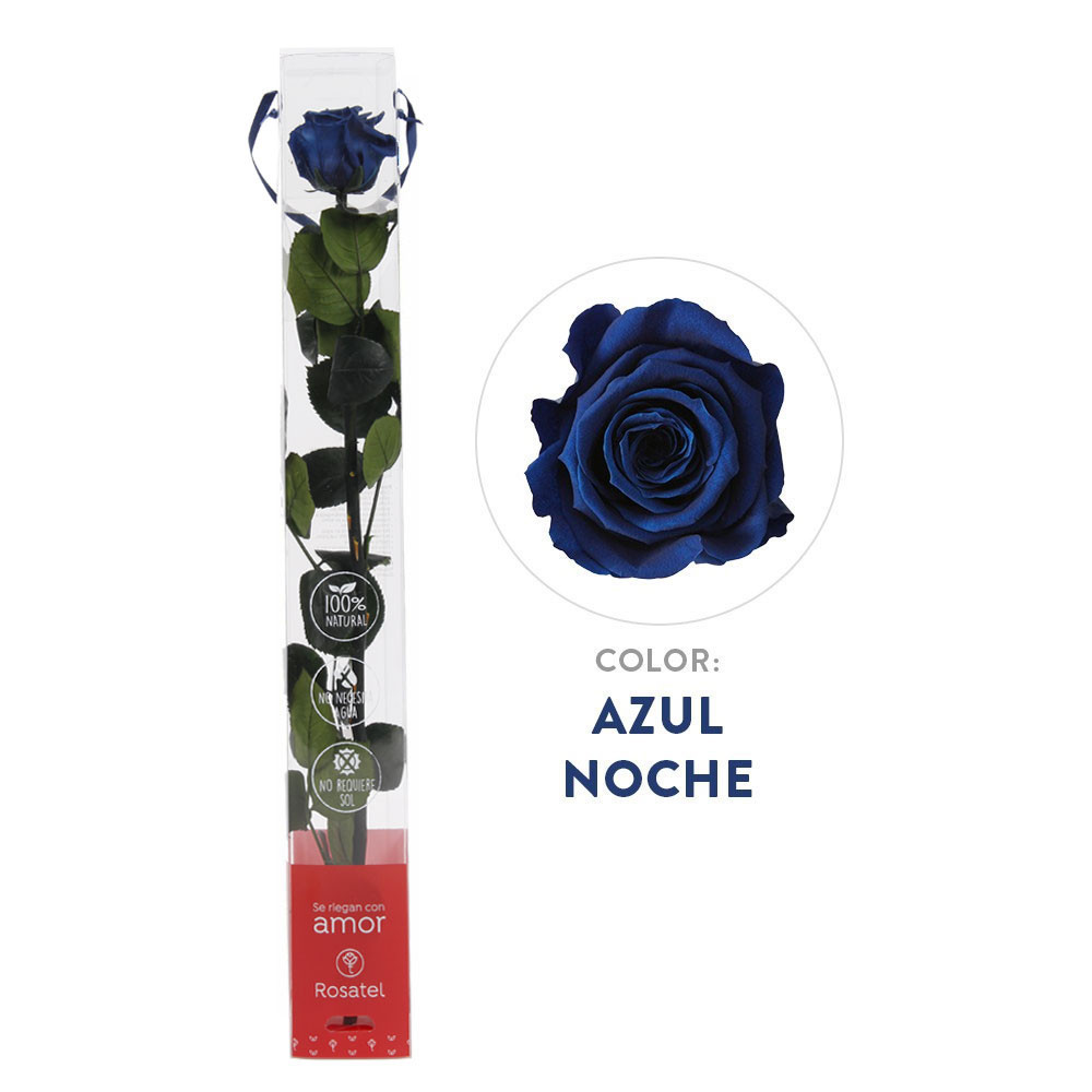 Rosa Azul Noche Preservada 100% natural Rosatel