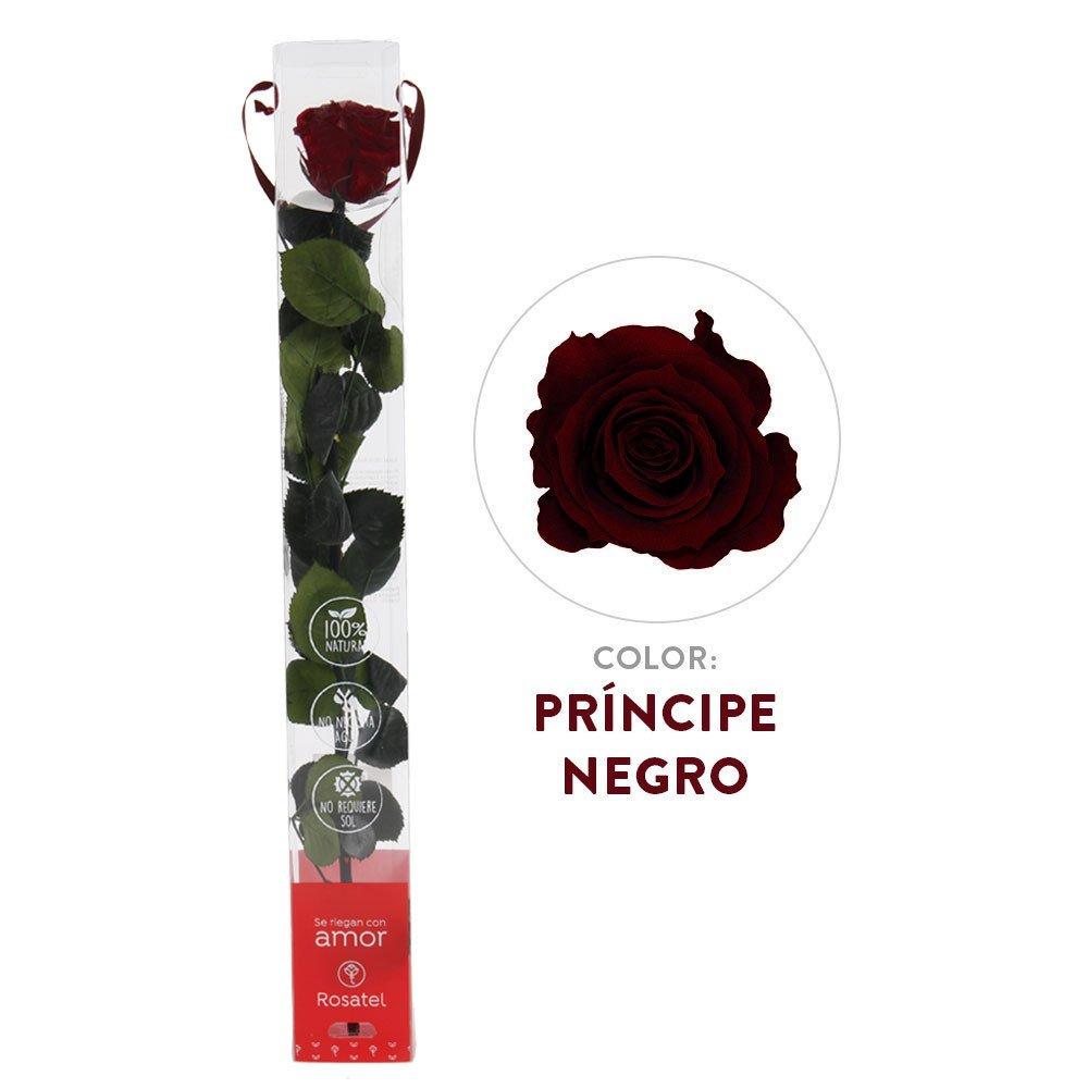 Rosa Príncipe Negro Preservada 100% Natural Rosatel