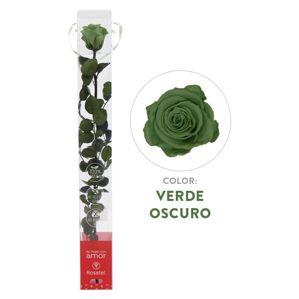 Rosa Verde Oscuro Preservada 100% Natural Rosatel
