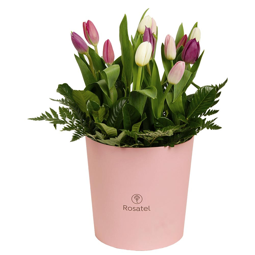 Sombrerera Grande Rosada con 12 Tulipanes Rosatel