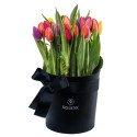 Sombrerera Negra con 25 Tulipanes Variados