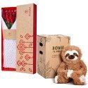 Caja 3R Natural con 12 Rosas Rojas y Bowie Perezoso Rosatel