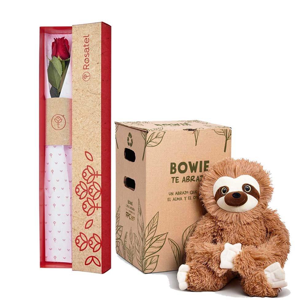 Caja 3R Natural con 1 Rosa Roja y Bowie Perezoso Rosatel