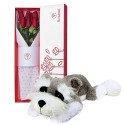 Caja Blanca con 6 Rosas y Perro Schnauzer XL Rosatel