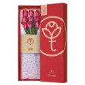 Caja 3R Roja Rosatel con 9 Tulipanes Rosatel