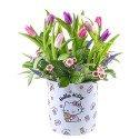 Sombrerera Línea Pequeña Hello Kitty con 12 Tulipanes y Flores Rosatel