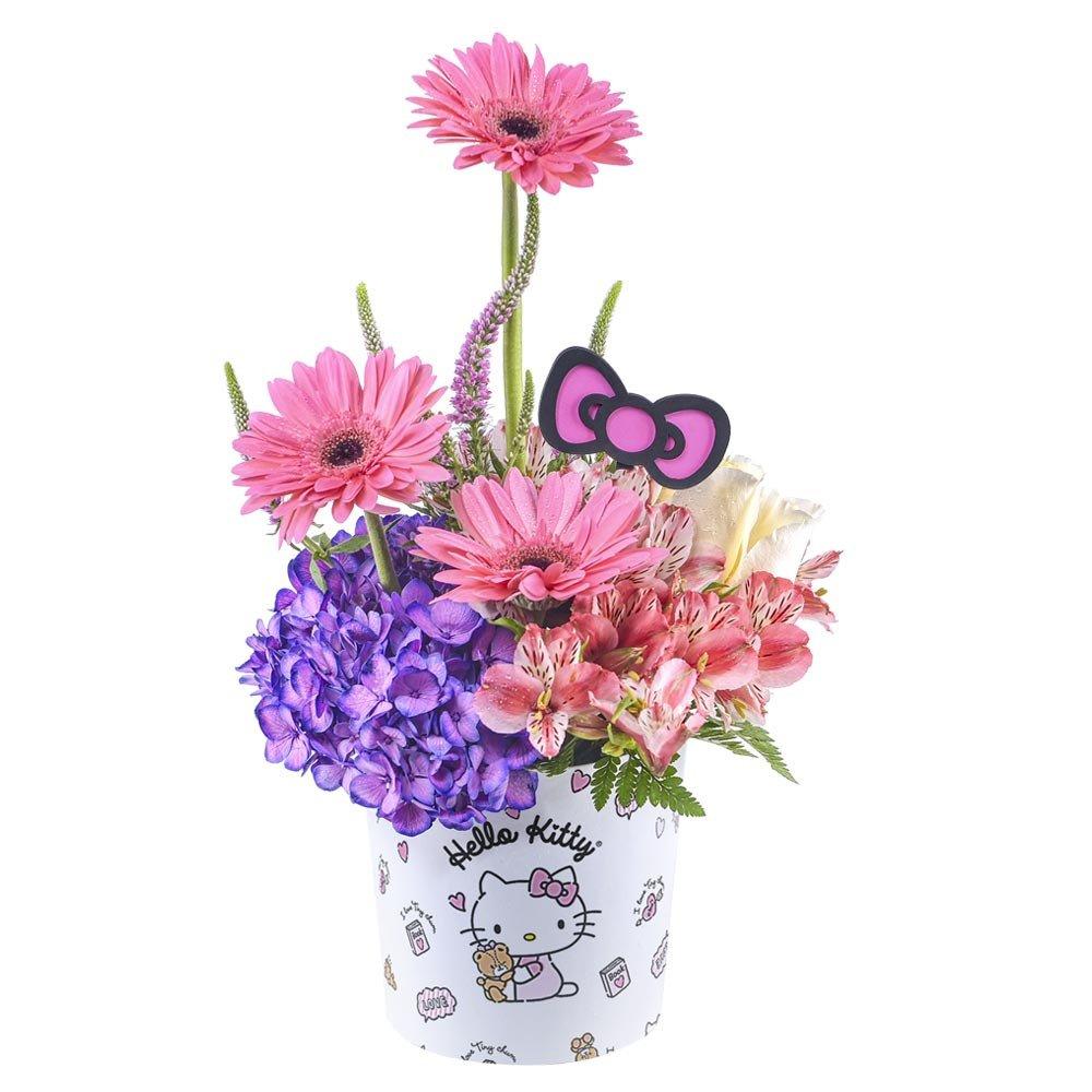 Sombrerera Línea Pequeña Hello Kitty Flores y Varilla Lazo Rosatel