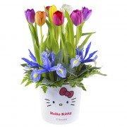Sombrerera Lazos Hello Kitty con 8 Tulipanes y Flores