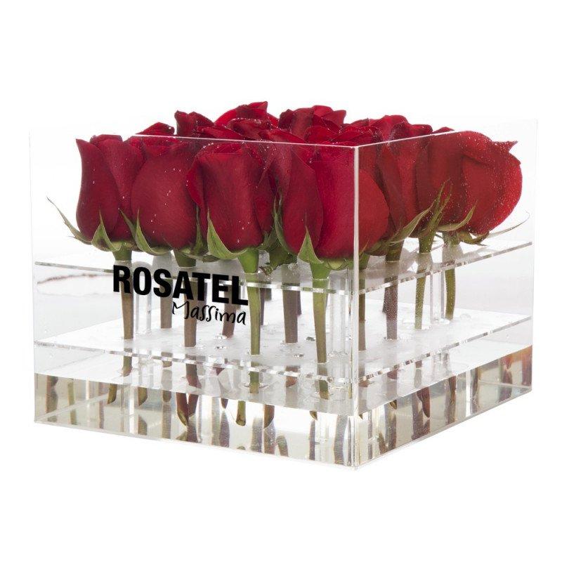 Caja Acr 237 Lica Cuadrada Con 20 Rosas Rosatel