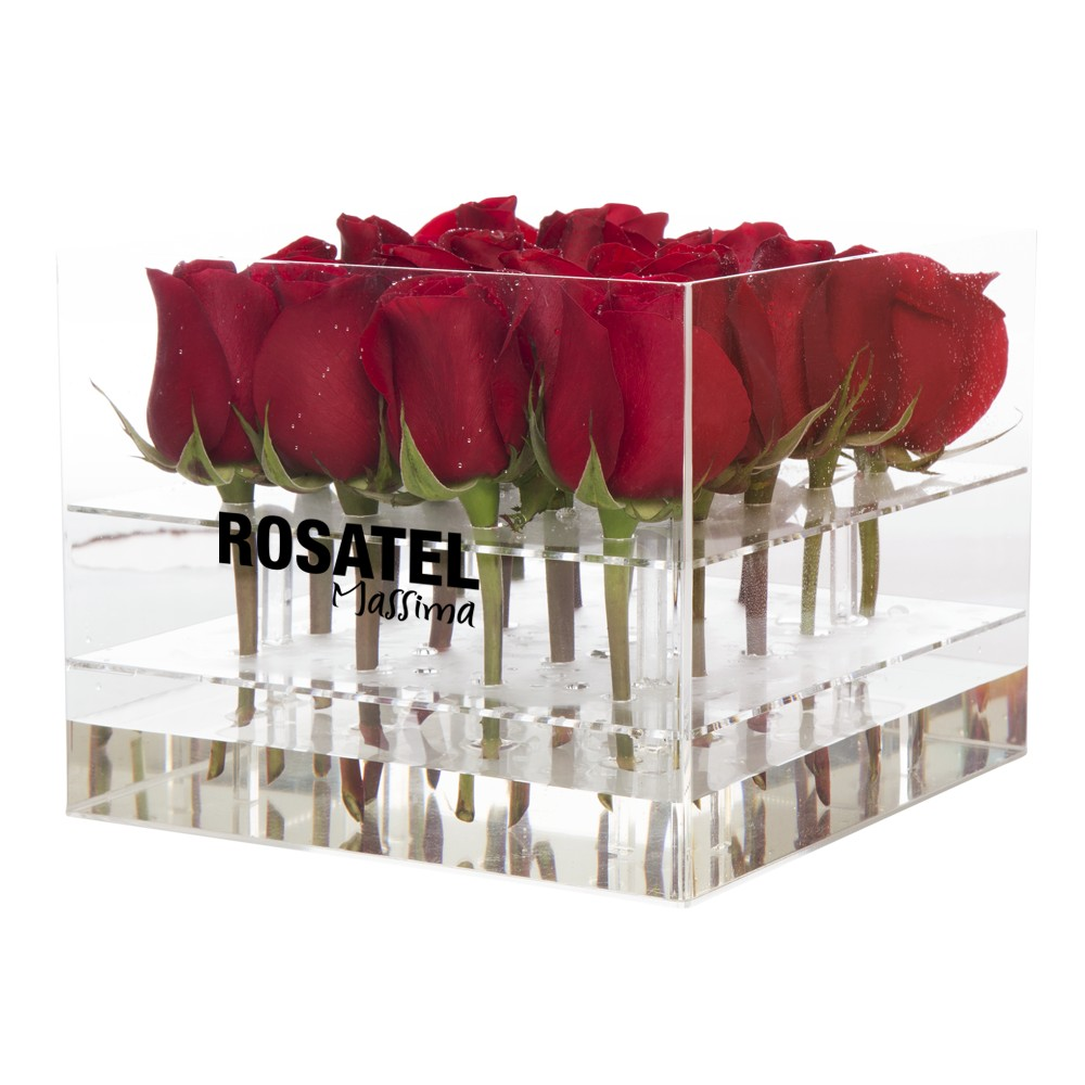 Caja acrílica cuadrada con 20 Rosas