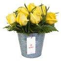 Lata con 10 Rosas Amarillas