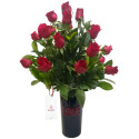 Base Love con 24 Rosas